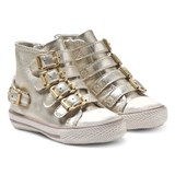 Ash Shoes Iron Gold Fanta Hi Tops