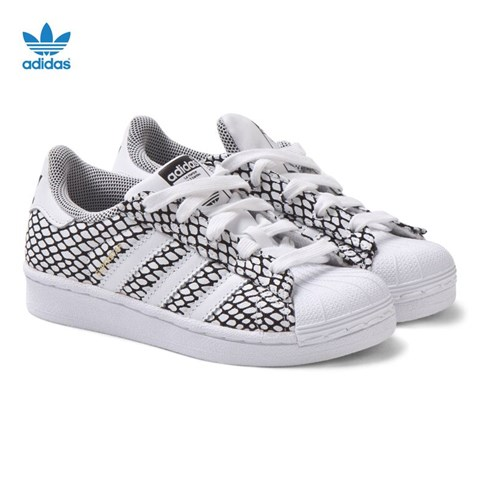 adidas superstar with snake print