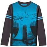 Animal Grey And Blue Slope Skateboard Photo Tee