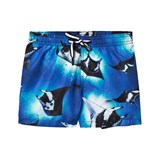 Molo Stingrays Niko Shorts