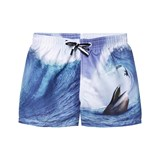 Molo Surfer Meets Whale Niko Shorts