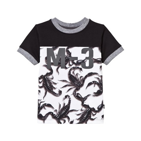 Molo Black Scorpion Fight Ranger T-Shirt