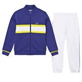 Lacoste Blue with White Stripe Tracksuit