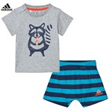 adidas Grey Racoon Graphic Shorts and Tee Set