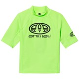 Animal Green Hiltern Branded Rash Vest
