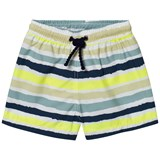 Heidi Klein Multicolour Stripe Trunks