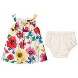 Gap Floral Dress with White Briefs