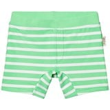 eBBe Kids Crisp Green Stripe Alanzo Swim Pants