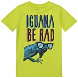 Lands' End Green Iguana Graphic Tee