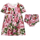 Dolce & Gabbana Pink Rose Print Cotton Dress with Briefs