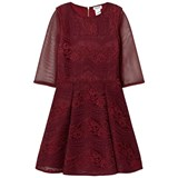 David Charles Wine Lace and Mesh Dress
