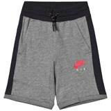 Nike Grey Nike Air Fit Shorts