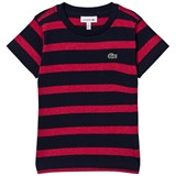 Lacoste Red and Navy Stripe Branded Tee