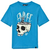 Animal Blue Skull Skate T-Shirt