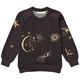 Soft Gallery Babs Sweatshirt  Peat, Galaxy Emb.