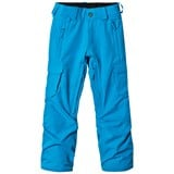 Volcom Blue Cargo Insulated Ski Pants