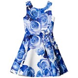 David Charles Blue and White Satin Floral Fit and Flare Dress