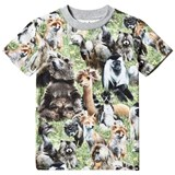 Molo Green Black and Brown Furry Animals T-Shirt