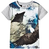 Molo Black White Blue and Green Flying Raven T Shirt