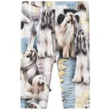 Molo Dog Print Leggings