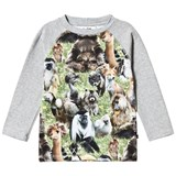 Molo Grey Green and Brown Furry Animals T-Shirt