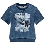 Diesel Blue Acid Wash Eagle and Branded Sweatshirt