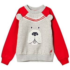 Joules Blue and Navy Sleeve Dino Sweatshirt 1 year