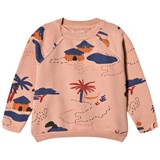 Bobo Choses Muted Clay Gombe Ranglan Sweatshirt