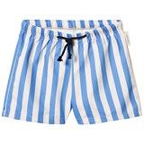 Tinycottons Stone and Cerulean Blue Striped Trunks