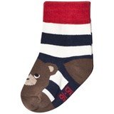 Melton Navy Jasper Bear Baby Socks