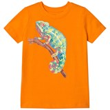 Lands' End Orange Chameleon Graphic Short Sleeve Tee