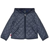 Ralph Lauren Navy and White Polka Dots Hooded Jacket