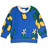 Mini Rodini Blue Lemon Sweatshirt