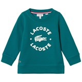 Lacoste Green Branded Sweater