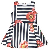 Jeycat Navy and White Stripe Poppy Print Dress