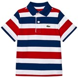 Lacoste Red and Blue Stripe Jersey Classic Tennis Ribbed Collar Shirt