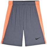 Nike Pale Navy and Red Nike Shorts