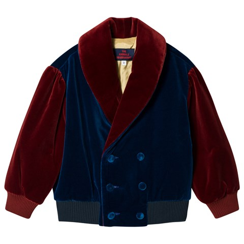 The Animals Observatory Navy Blue And Red Tao Tiger Kids Jacket