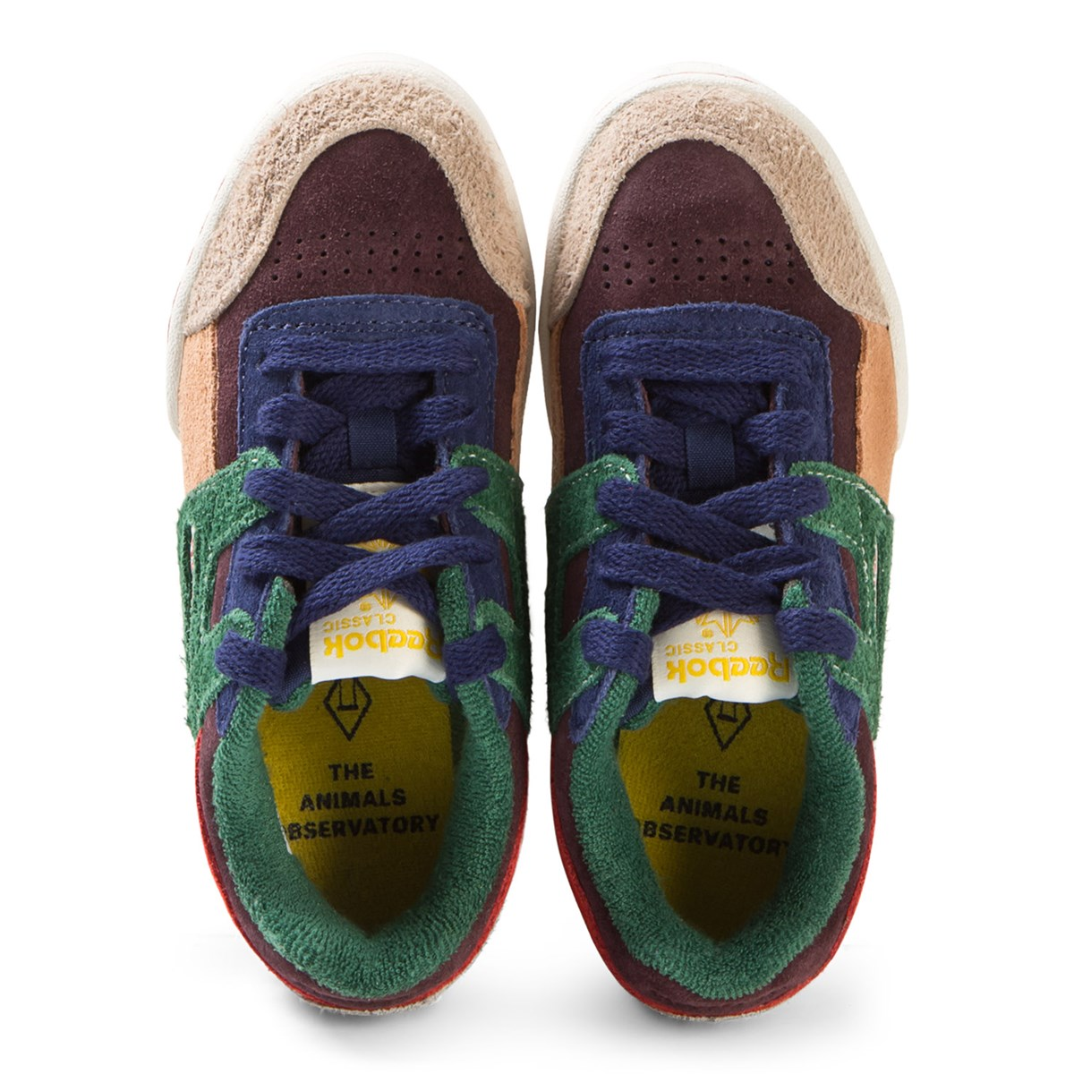 560b502f2c17 The Animals Observatory Red Blue And Green TAO Workout Plus Kids Trainers