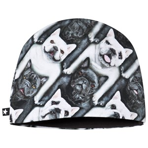 MOLO | Molo Grey French Bulldog Ned Baby Hat 6-12 Months | Goxip