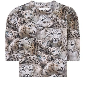 Molo Babies' Multicolor T-shirt For Kids With Tiger In Grey